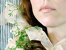 ~ daisy ribbon ~ by Adriana Glackin