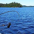 Lake Trout Fishing by Debbie Oppermann