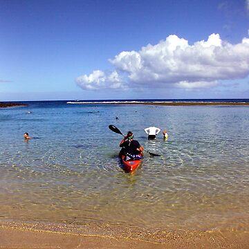 Kayaking Kauai by psart