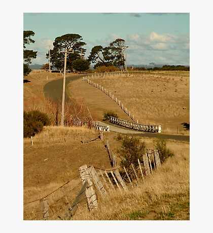 Coghill's Creek Bridge Photographic Print