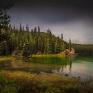 Maligne Lake - Canada by Greg Earl