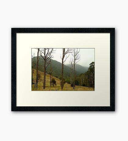 Evening Mist,Jackson's Crossing, Snowy River Framed Print