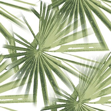 Tropical Beach Palm Vector  by taiche