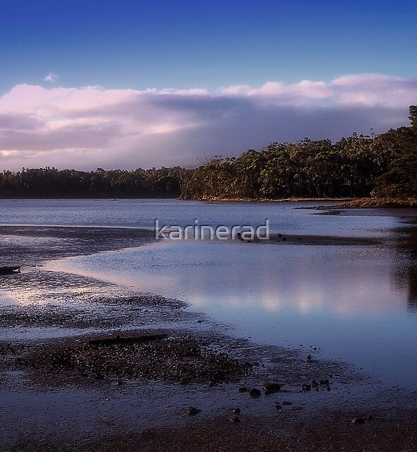 Tide's Out by Karine Radcliffe