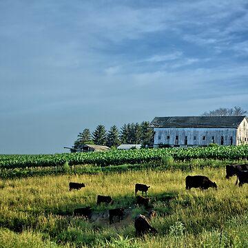 An Iowa Farm Scene by LynyrdSky