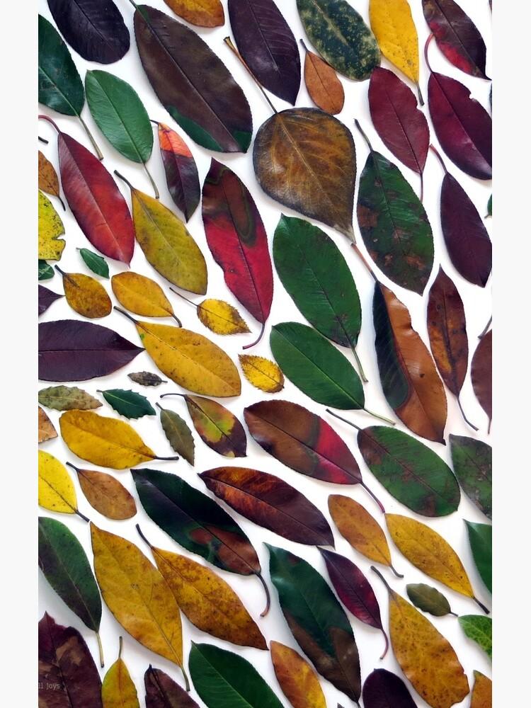 Leaves #5 by helen121