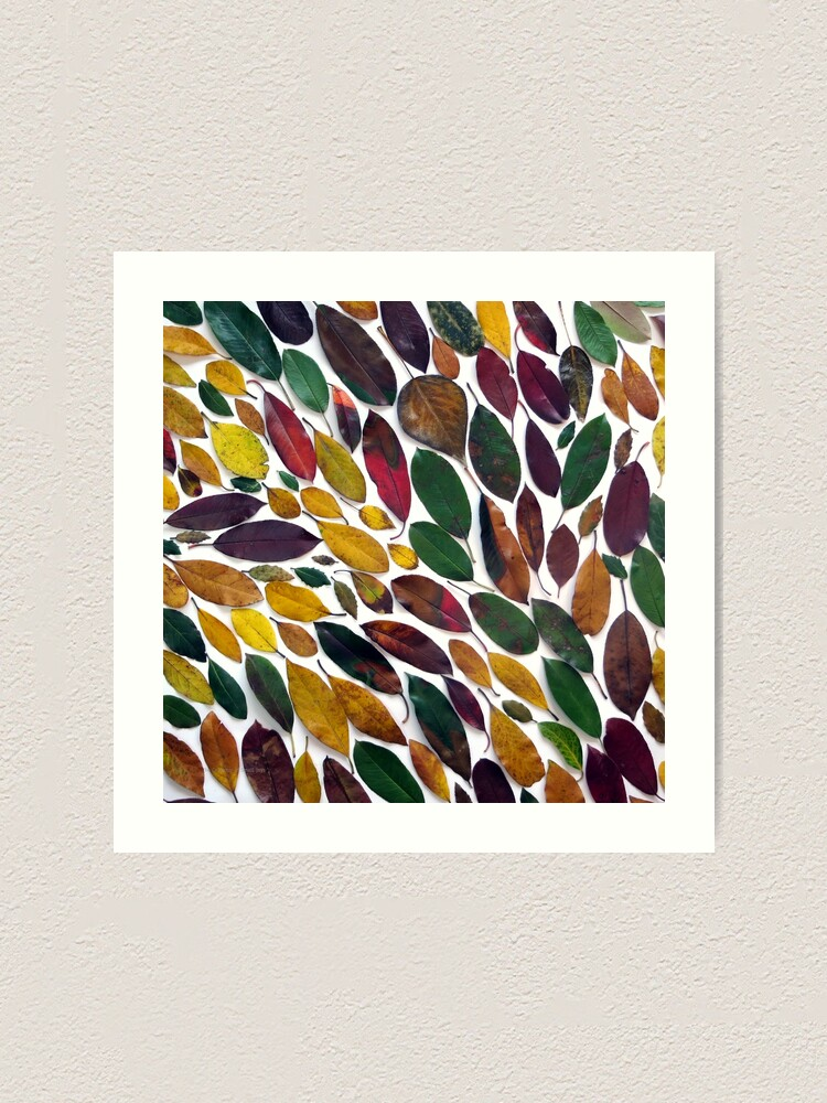 Alternate view of Leaves #5 Art Print