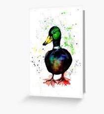 Brusho Mallard Duck- Drake Greeting Card