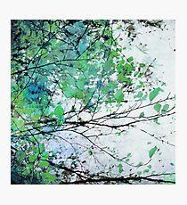 Autumn 5 Green Photographic Print