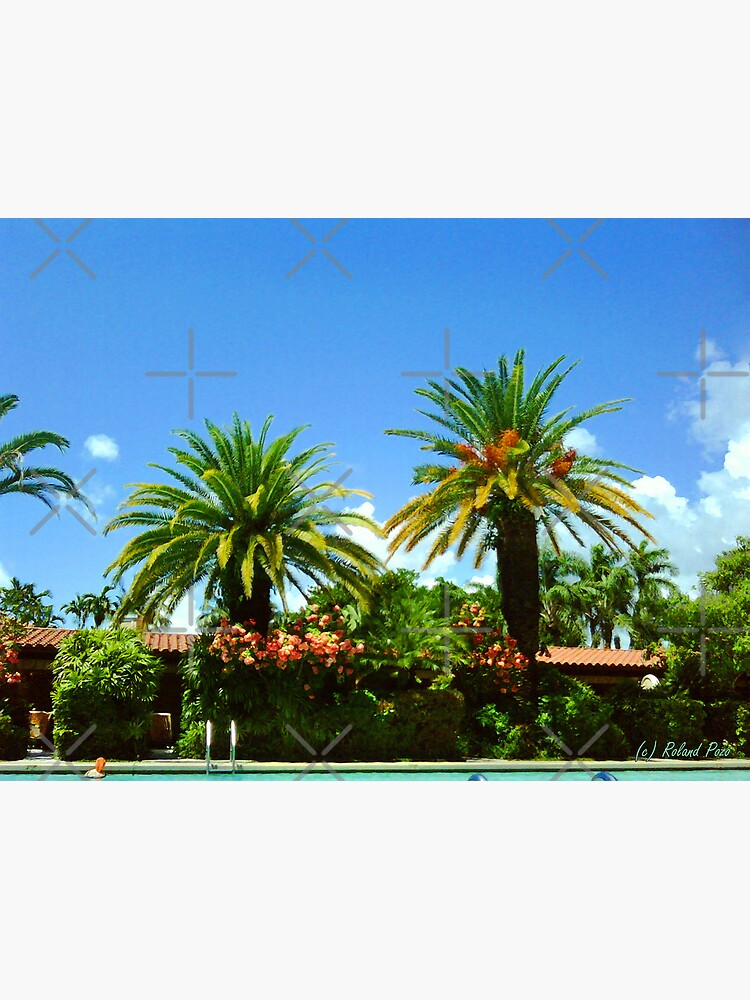 Poolside Afternoon by photorolandi