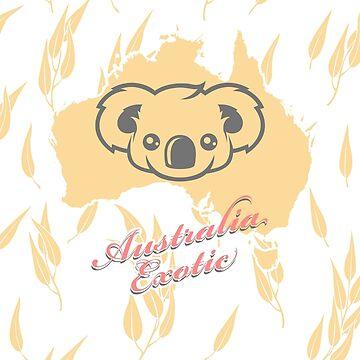 Koala Bear -  Australian Exotic Animal by lu2k