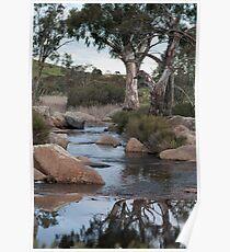 Reedy Creek waterfall Poster