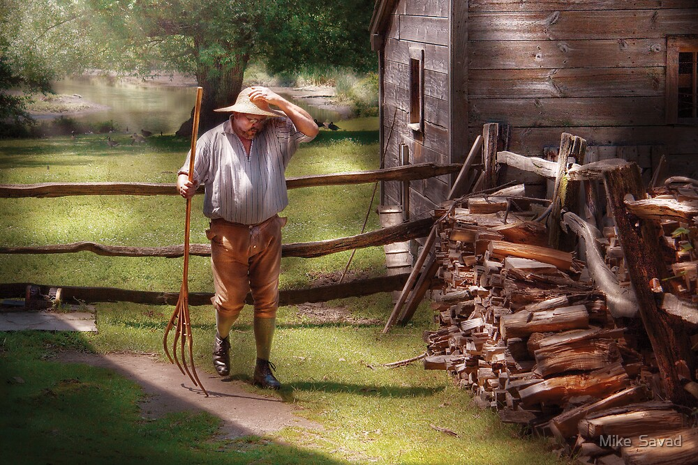 Chores by Michael Savad