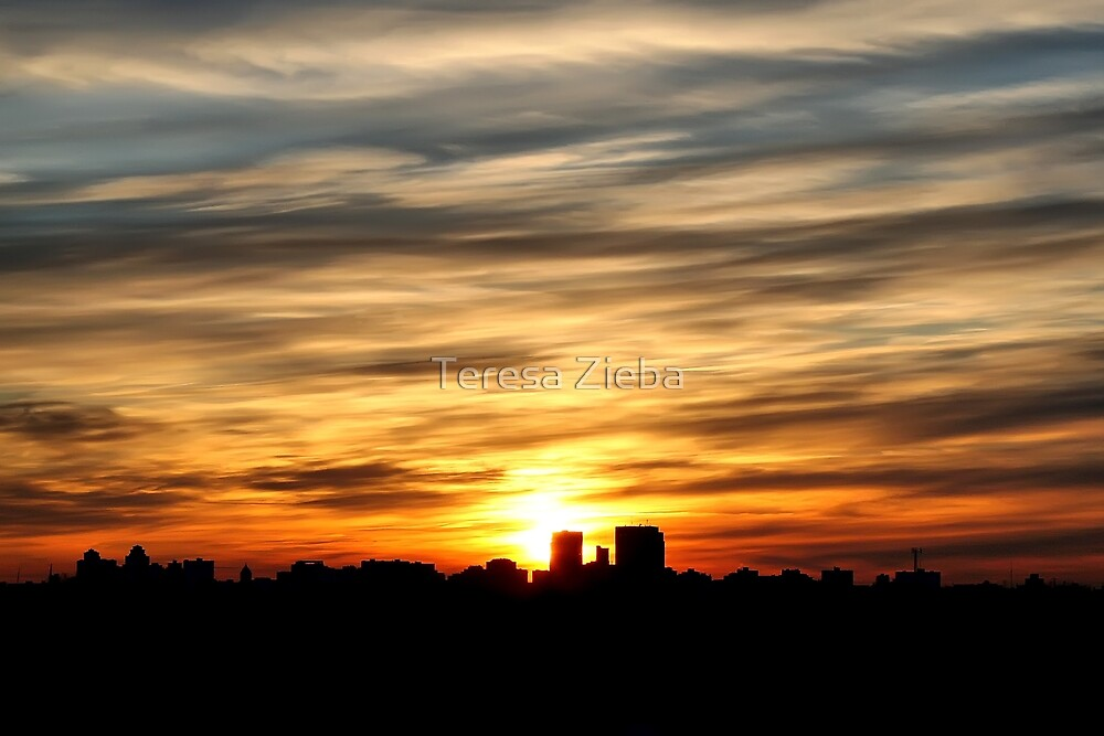 Sky on Fire by Teresa Zieba