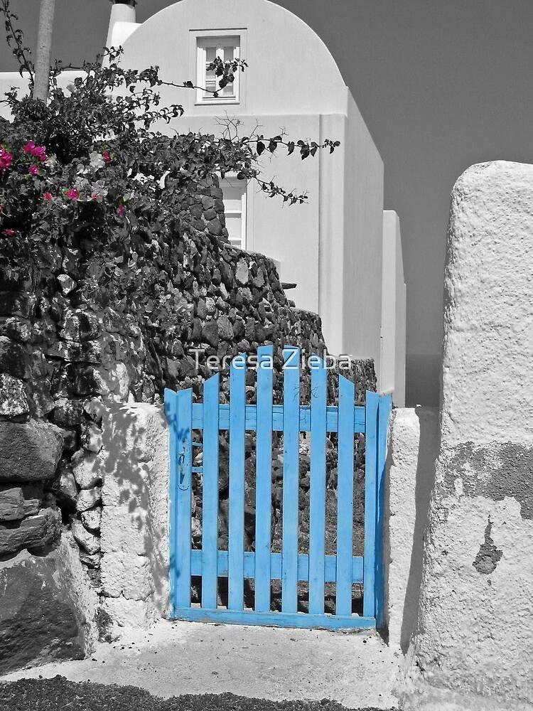 Blue gate by Teresa Zieba