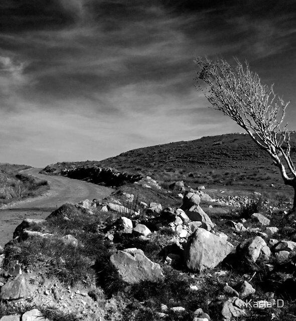 Islay: The Survivor by Kasia-D