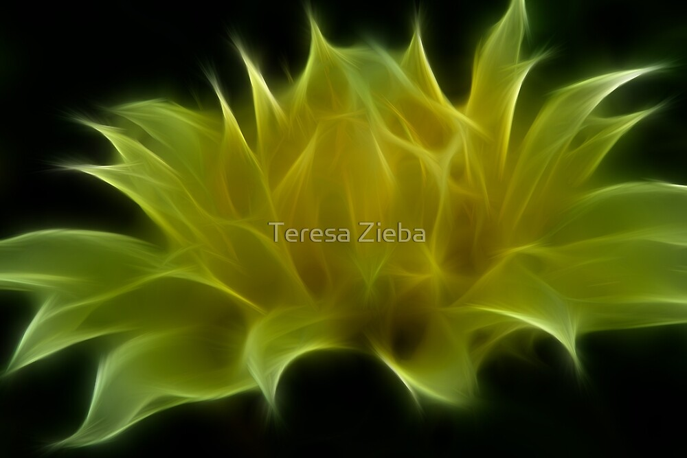 Almost There Dahlia by Teresa Zieba
