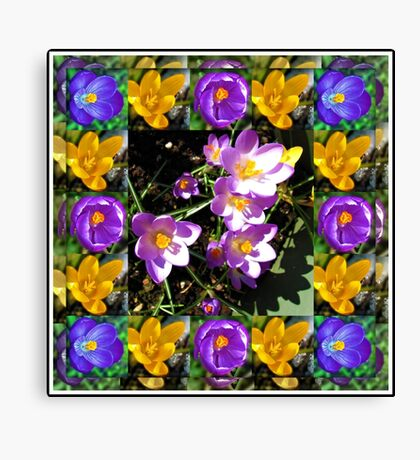 Crocus Collage in Mirrored Frame Leinwanddruck