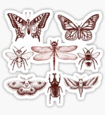 Red Insect Series in pointillism Sticker