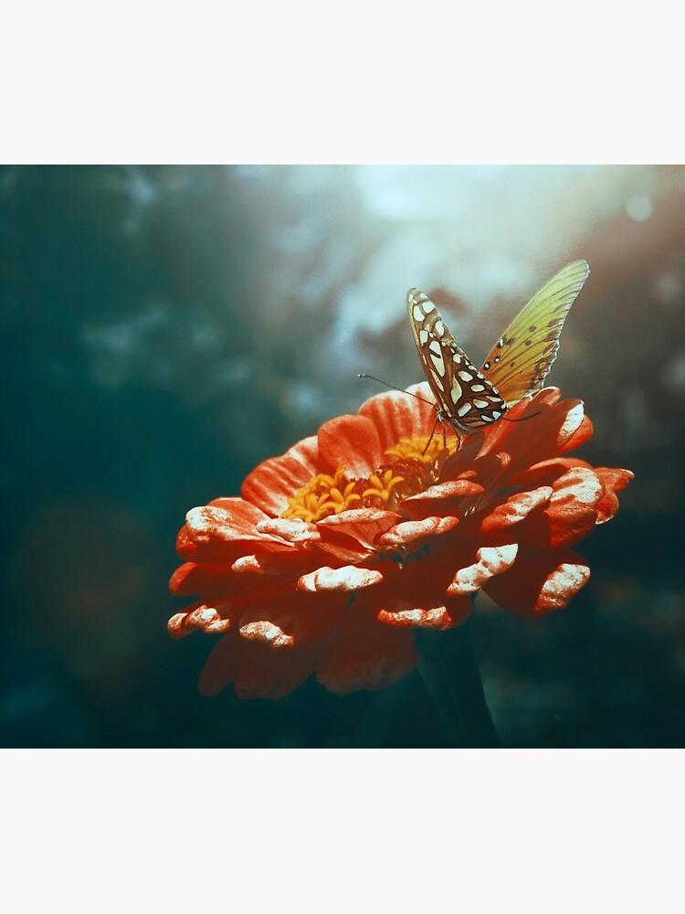 Wandering Wings  by EmiBlackBox