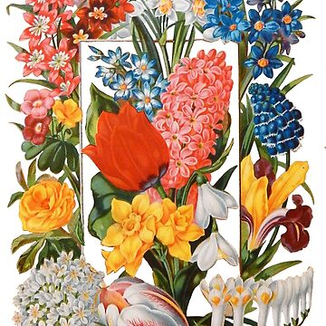 Victorian Flower Box Vintage Scrapbook Flowers with Tulips, Narcissus, Crocus, Freesia and More by vinpauld