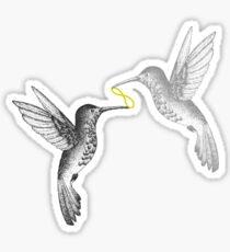 A Couple of Hummingbirds Sticker