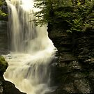 Fulmer Falls P.A by jayant