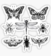 Insect Series in pointillism Sticker