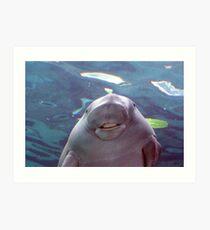Smiling Dugong... Art Print