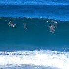 Dolphin Surfers by Penny Smith