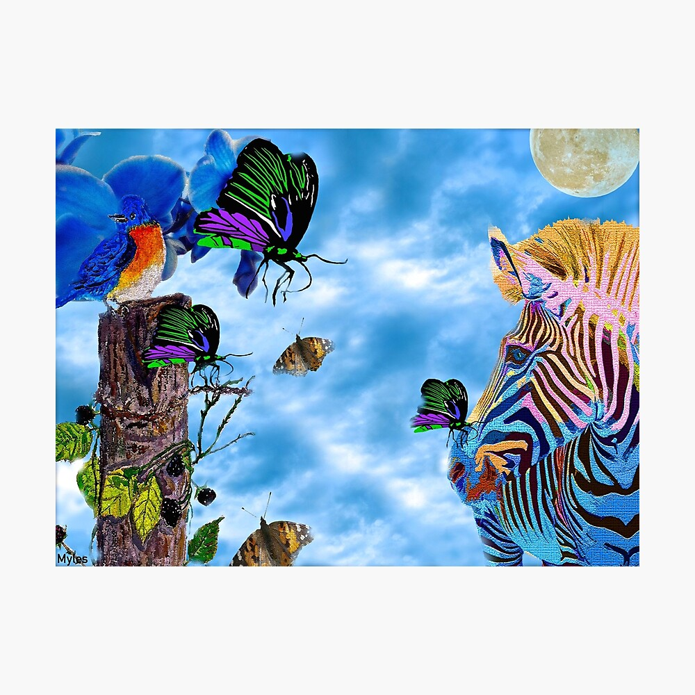 Zebras Birds And Butterflies Good Morning My Friends Poster By Overthetopsm Redbubble