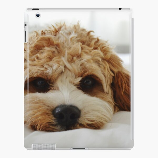 Charlie iPad Snap Case