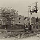Station Masters House-Levisham,North Yorkshire  by Trevor Kersley
