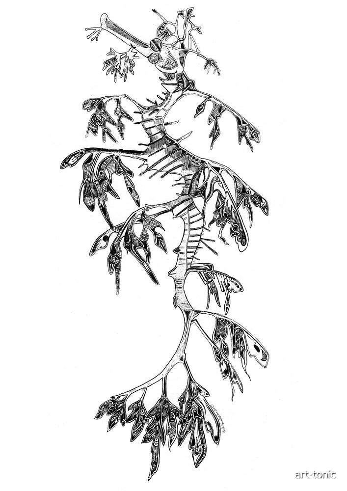 Leafy Sea Dragon -  by art-tonic