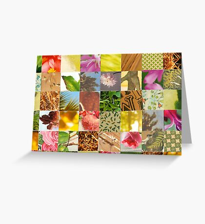 Collagecard: Nature Greeting Card
