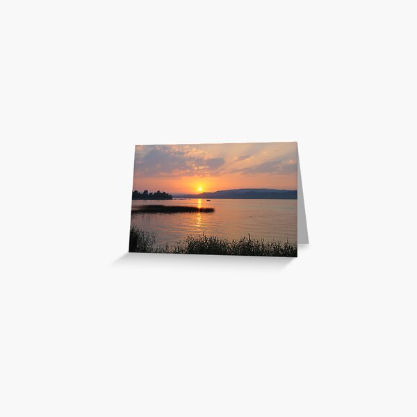 Lakeside sunset with reeds Greeting Card