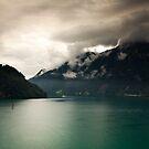 SwissAlps by Sander van der Veen
