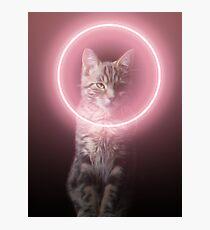 Darth Neko - The cat from the dark side  Photographic Print