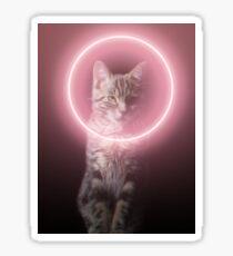 Darth Neko - The cat from the dark side  Sticker