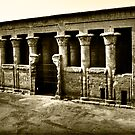 Temple of Khnum at Esna by Roddy Atkinson
