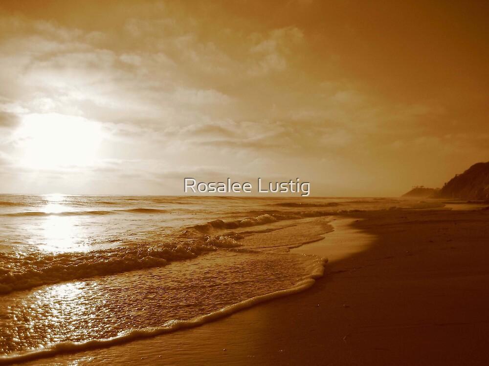 Soul Refreshing by Rosalee Lustig