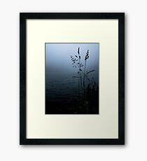 The calm lake Framed Print