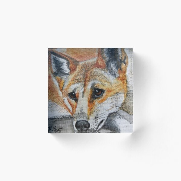 Dingo Acrylic Block