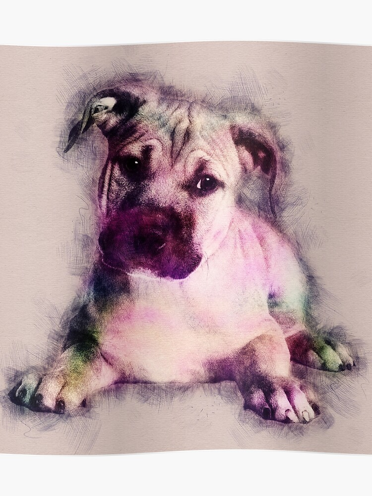 American Staffordshire Terrier - Amstaff Puppy   Poster