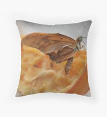 Creased Throw Pillow