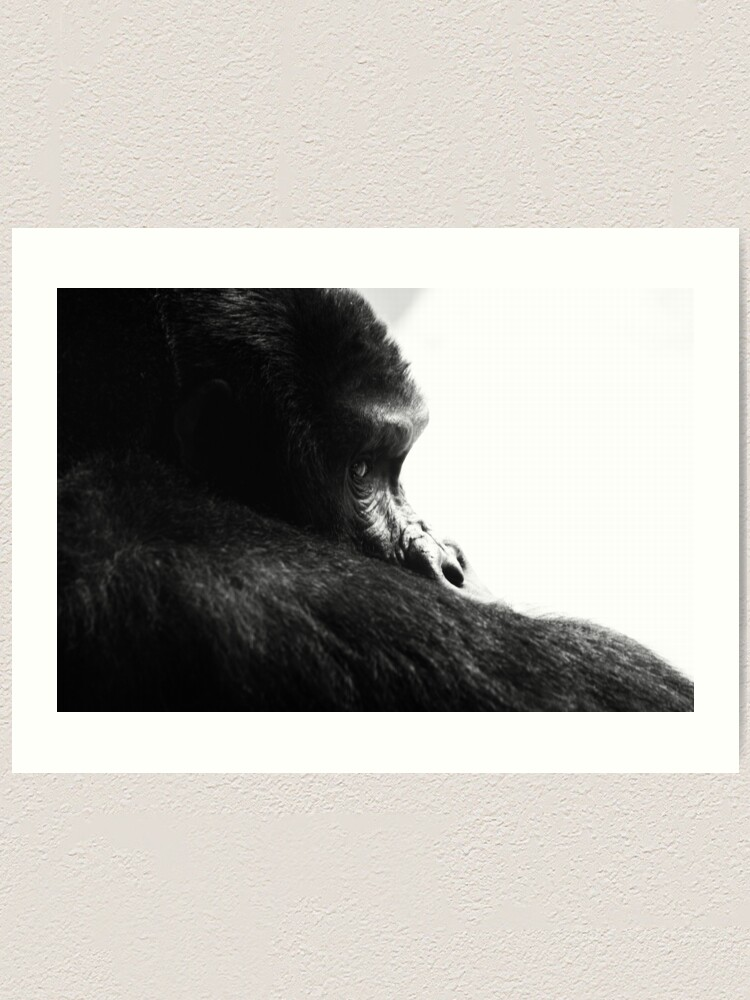 Alternate view of Gorilla! Art Print