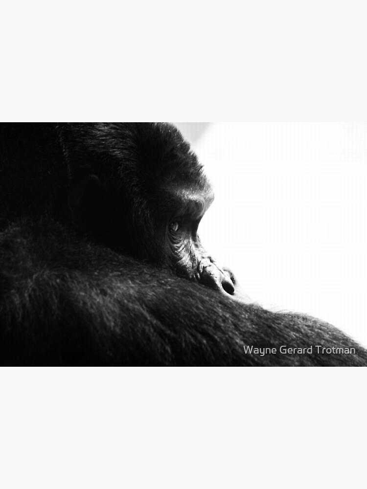 Gorilla! by redmoondragon