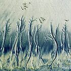 The Cypress Forest by Bunny Clarke