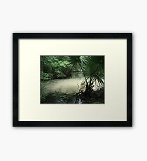 Outflow from the Beaverdam Framed Print
