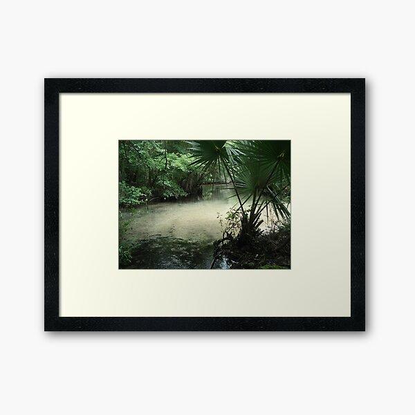 Outflow from the Beaverdam Framed Art Print